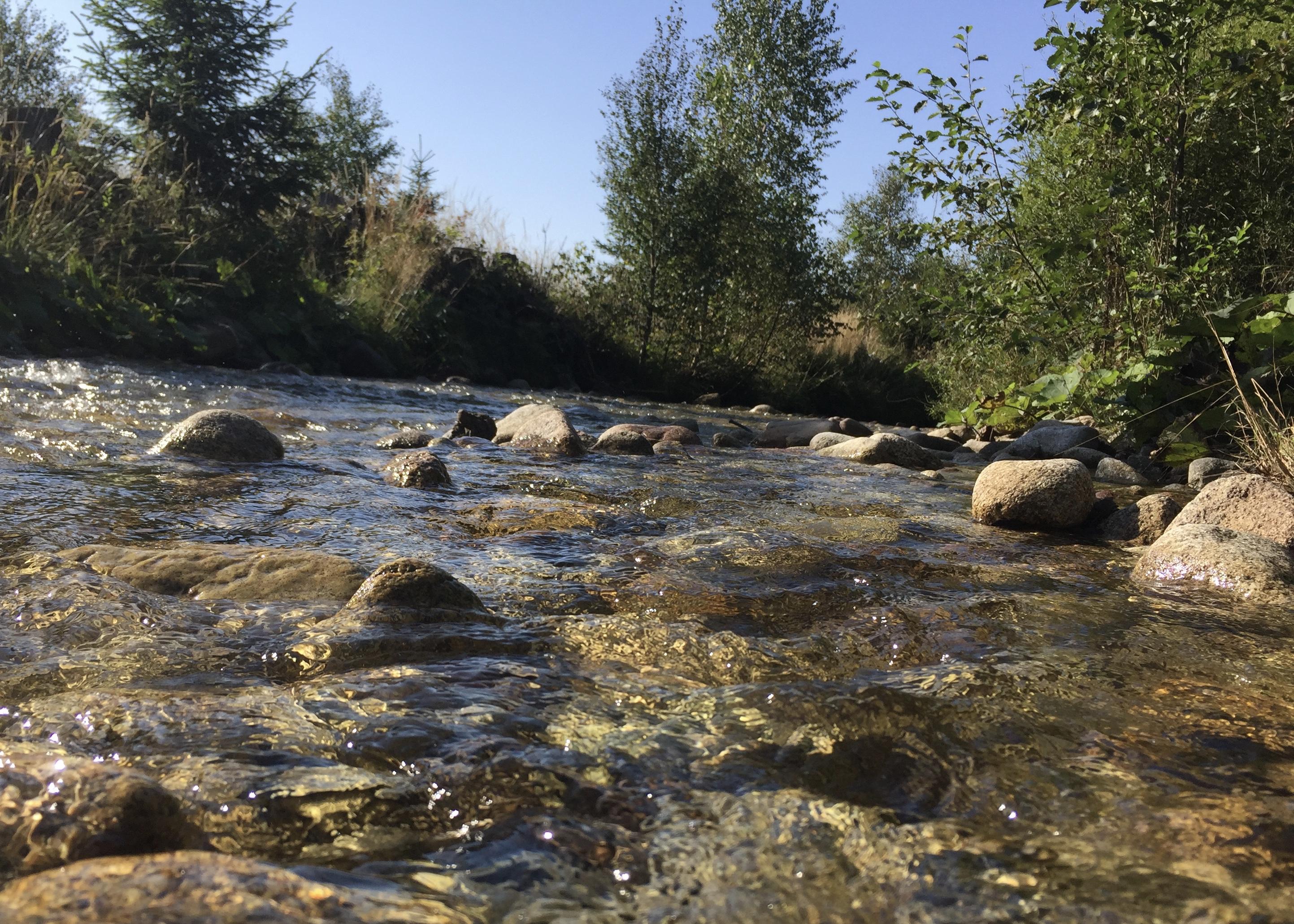 Studený potok Tatry